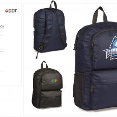 COLLEGIATE BACKPACK 4125